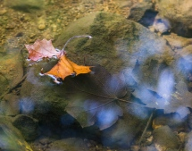 20160925_waterfallglen_017-Edit